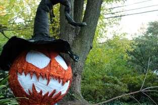 The Haunted Pumpkin Garden 5