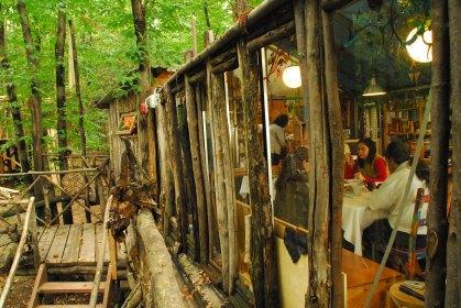 Il villaggio arboricolo tra i Monti Pelati 1