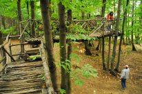 Il villaggio arboricolo tra i Monti Pelati 3