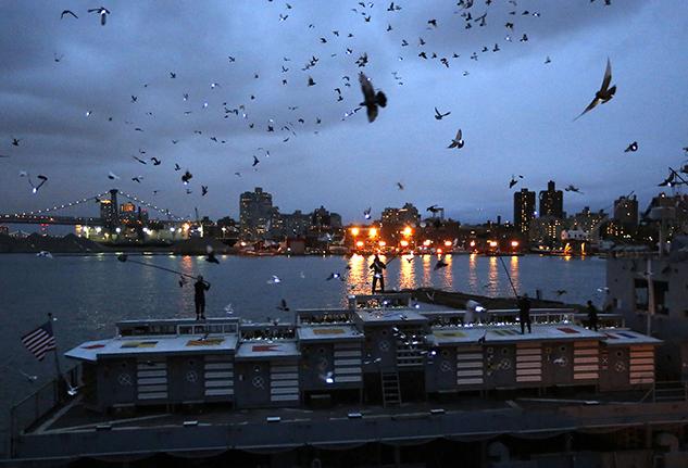 Duke Riley piccioni New York