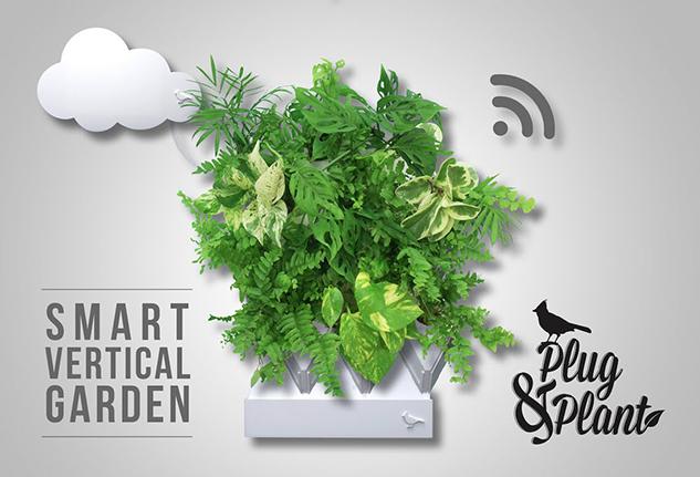 Plug & Plant