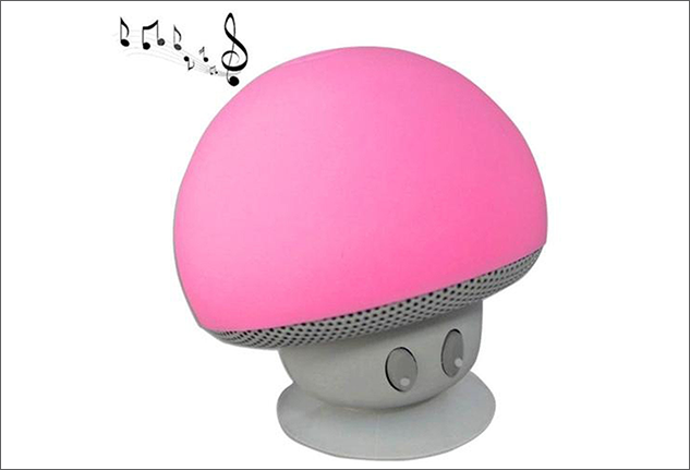 Speaker fungo