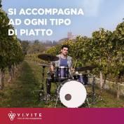 vivite (10)